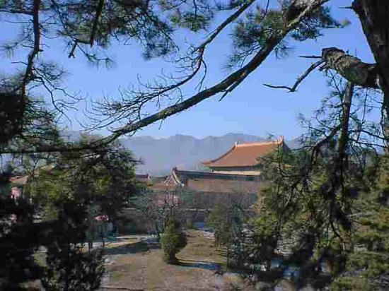 Shenyang Dongling Park : 不错