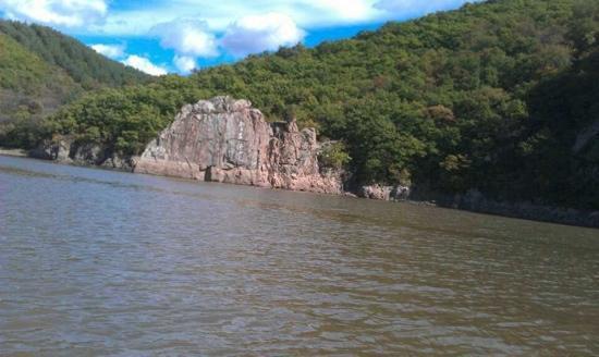 Underground Forest of Jingpo Lake: ok