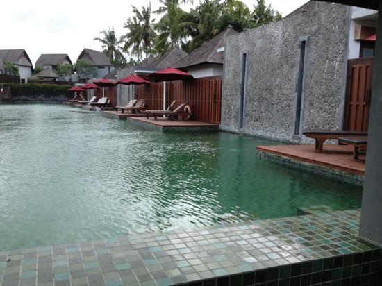 โรงแรมฟูราม่า วิลล่าส์ แอนด์ สปา: 泳池别墅