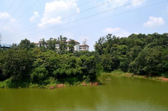 Hujing Yinxiang Holiday Hotel : 外观湖景
