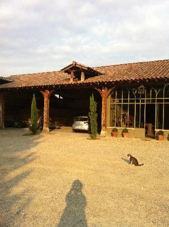 La ferme de Gringalet : 清晨的农庄