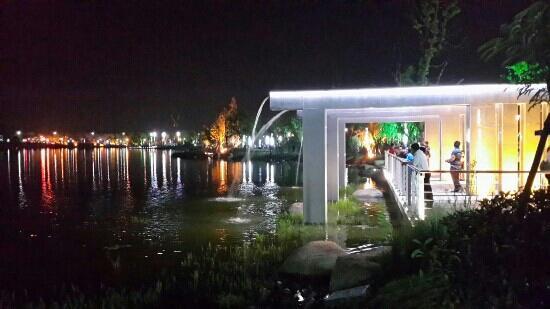 Zhangjiagang Park: 张家港凤凰湖的夜景