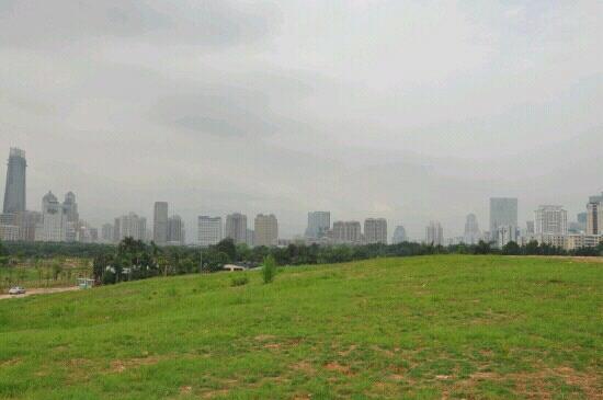 Shenzhen Central Park: 中心公园
