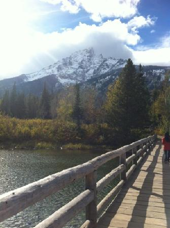 Jenny Lake: 雪山和湖泊