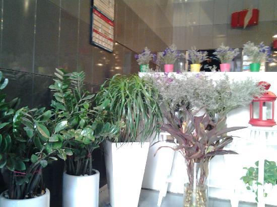 Jinjiang Inn Xi'an Zhonglou Luomashi: 大堂的植物