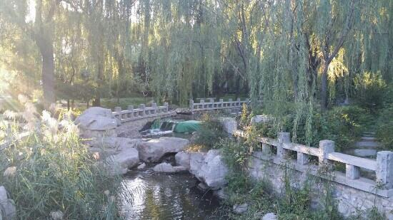 Xigu Park : 初秋