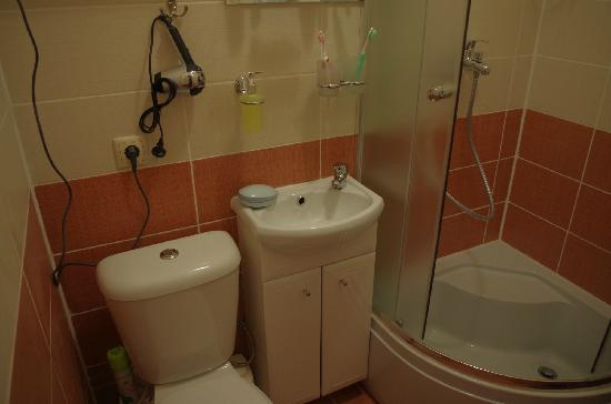 Old Moscow Mini Hotel : 拥挤狭小的洗手间