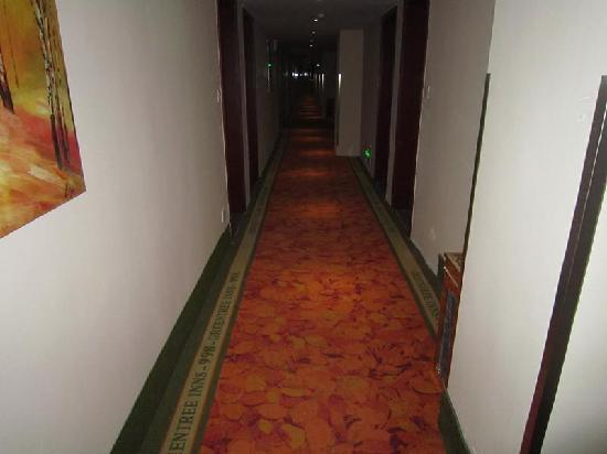 GreenTree Inn Yixing Zhangzhu Express Hotel: 走廊