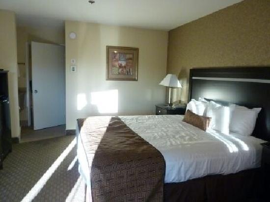 Best Western Plus Pleasanton Inn : 室内