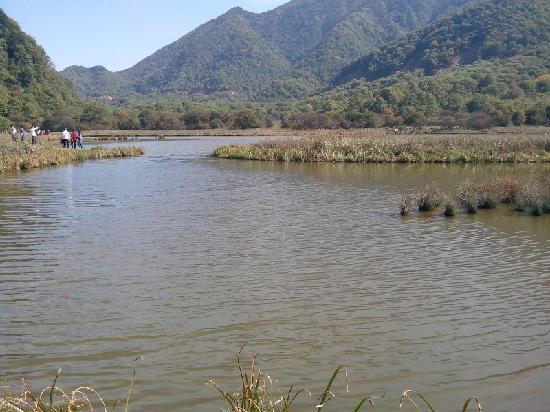 Shennongding National Nature Reserve: 大九湖就是这样的