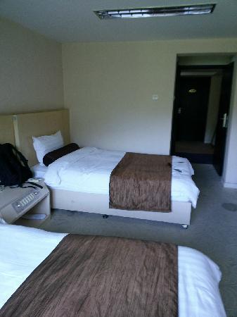 Bailong Tang Royal Holiday Hotel: 房间1