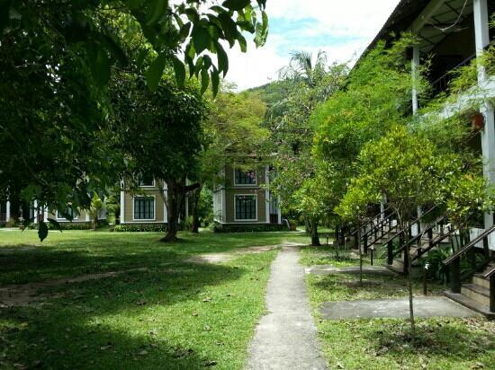 Coral Redang Island Resort: 回房间路上