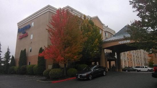 Fairfield Inn Seattle Sea-Tac Airport: 酒店外面的大树很茂盛啊