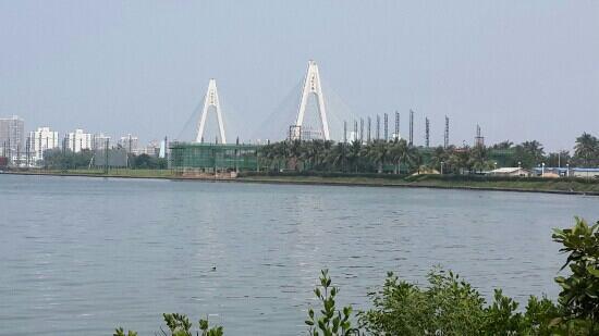 Shiji Bridge: 世纪大桥