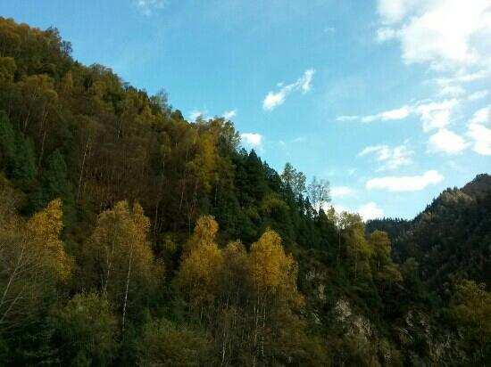 Beishan Mountain Forest Park of Huzhu : 互助北山国家森林公园