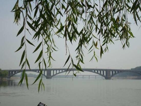 Longmen Bridge: 好