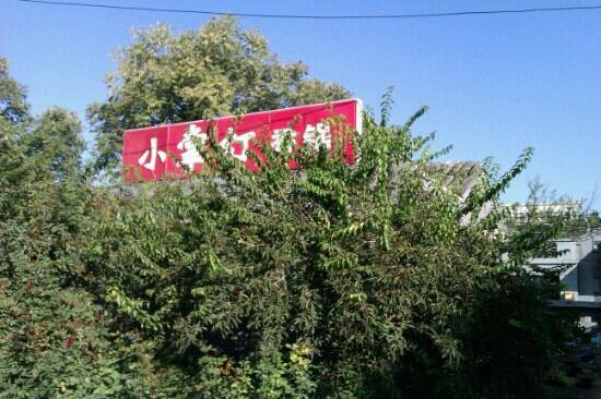 Xiao ZhangDeng Xiang Guo