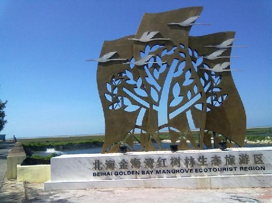 Jinhaiwan Mangrove Scenic Area