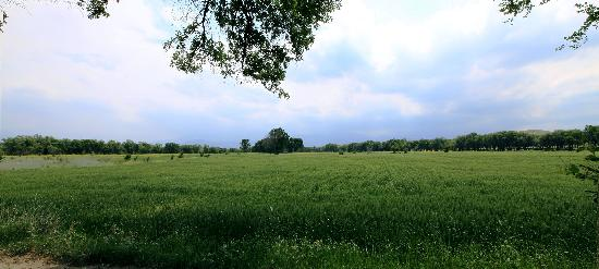 Lujiaowan Grassland