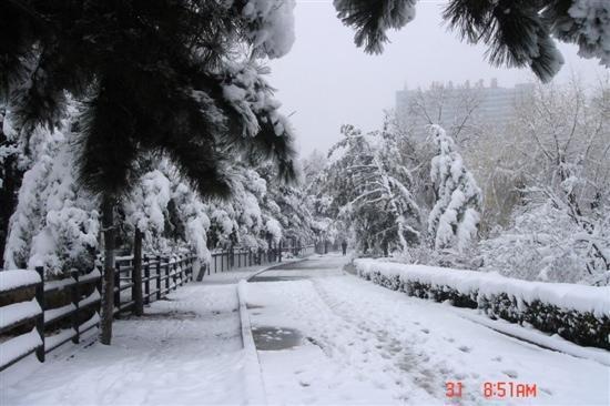 B&B di Linjiang