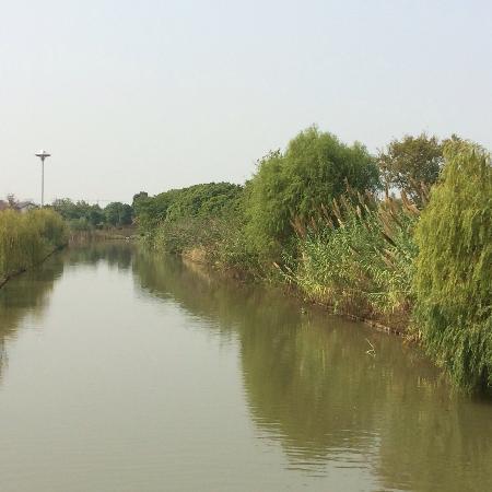 Suzhou Taihu Wetland Park: 太湖湿地公园1