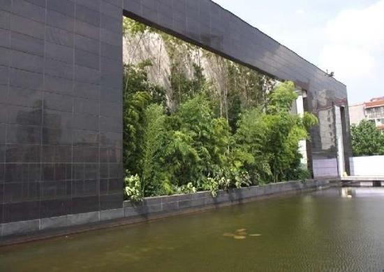 Changsha Bamboo Slips Museum: 不错