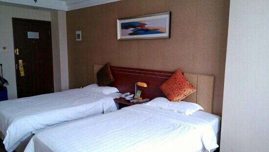 Jinshanghua Hotel: 商务标准房