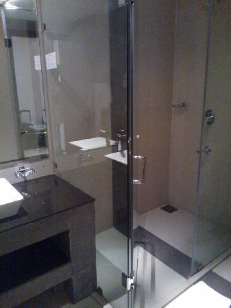 Hotel Thilanka: 酒店的卫生间