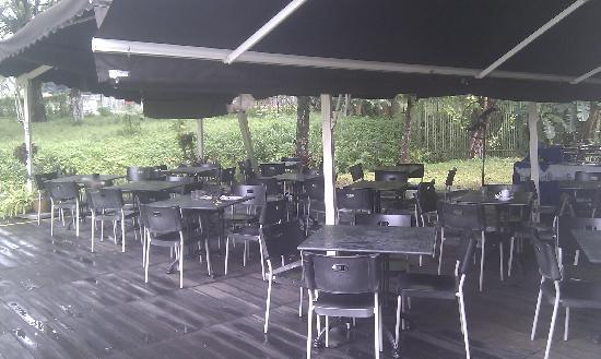 Rider's Lodge: 拍于吃早餐时,黄嘴鸟来蹭吃,后面的篱笆后养了很多狗,叫声很大
