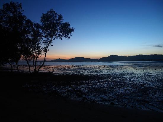 The Mangrove Panwa Phuket Resort : 海滩