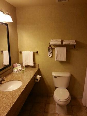 Holiday Inn Express Cedar City: 洗手间
