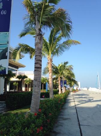 Serenity Marina Hotel: 帆船港酒店