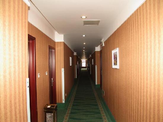 GreenTree Inn Suzhou Wangting Zhanwang: 走廊