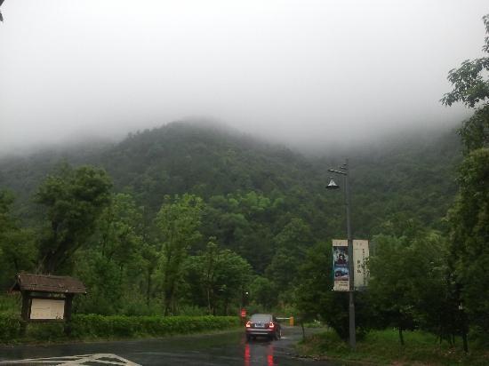 Huanggongwang senlin Park: 雨中景