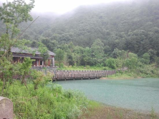 Huanggongwang senlin Park: 景二