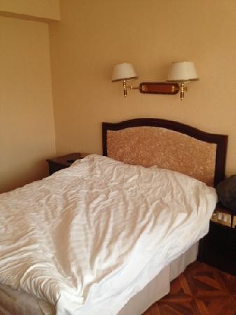 Beinong Hotel: 大床房
