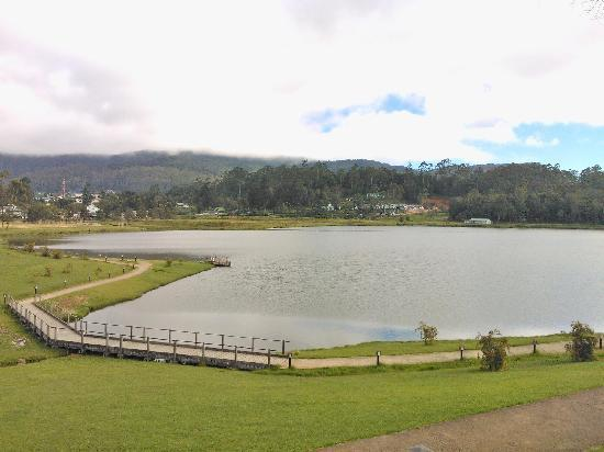 The leisure village Nuwara Eliya : 酒店周边的景色