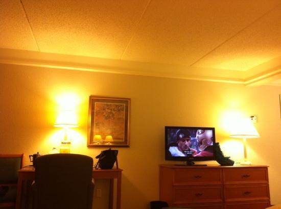 La Quinta Inn & Suites Orlando Airport North : room