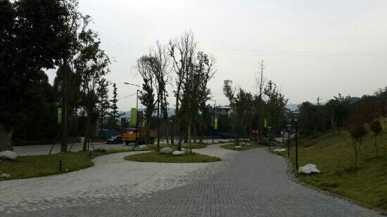 Jinyun Mountain: 上山的路