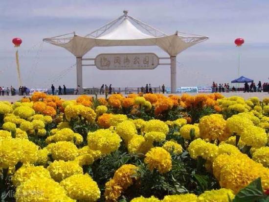 Yuehai Park: 不错