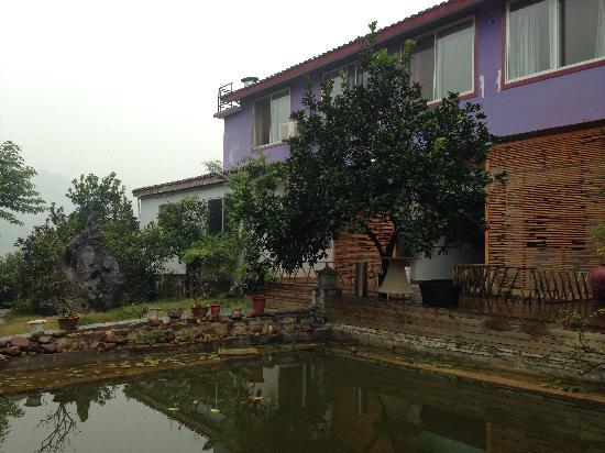 CTN Garden Hotel: 雅致的环境