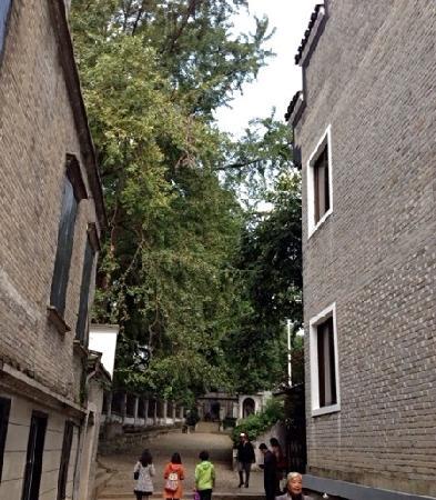 Ningbo Fenghua Tengtou Village: v