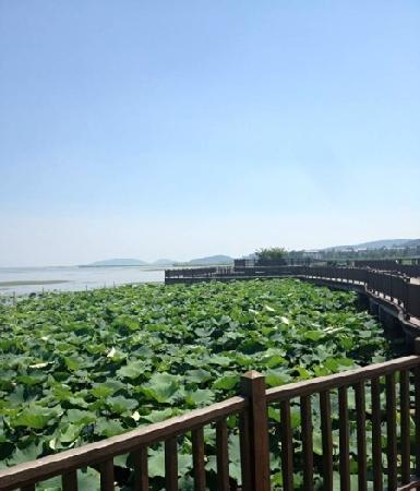 Haiou Centre Island Resort