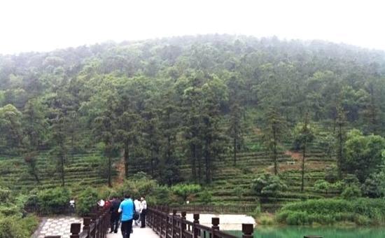 Wangshan Eco Garden Wangfulou Restaurant