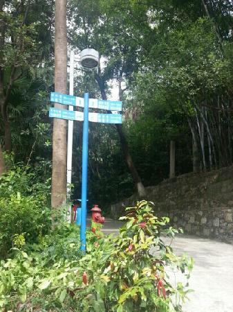 Yueshan Park
