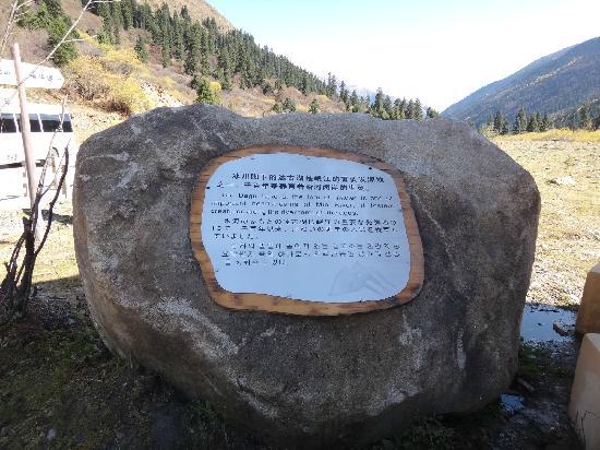 Dagu Glacier : dagubingchuan