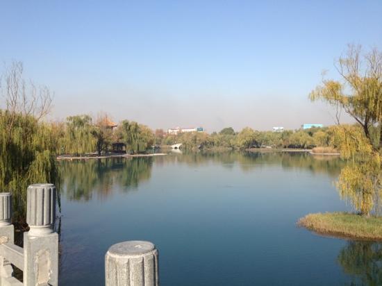 Baimai Spring Park : 桥上眺望百脉泉公园一角