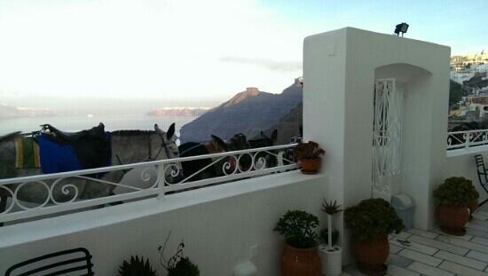 Archontiko Santorini : 大门外就是悬崖海景