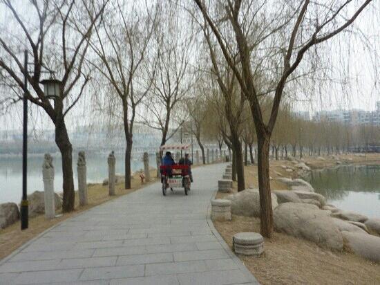 Xi'an Qujiangchi Site Park : 遗址公园