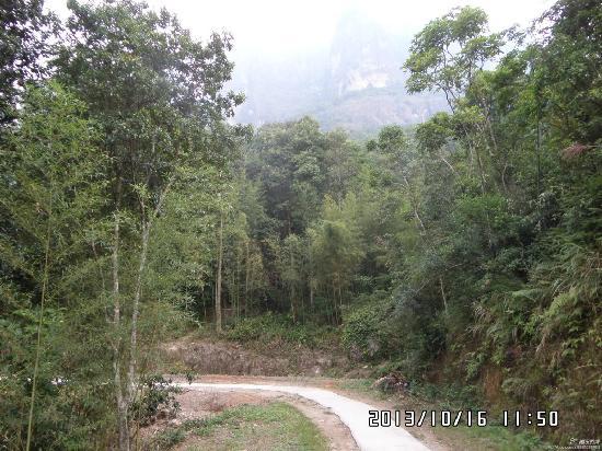 Lingtong Mountain: 腾云驾雾上云霄,灵通峰顶问风流。.